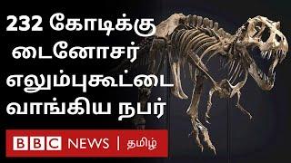 அம்மாடியோவ்… World Record – 232 கோடிக்கு ஏலம் போன டைனோசர் எலும்புக்கூடு – ஏன் தெரியுமா? dinosaur