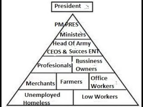 why is social structure important