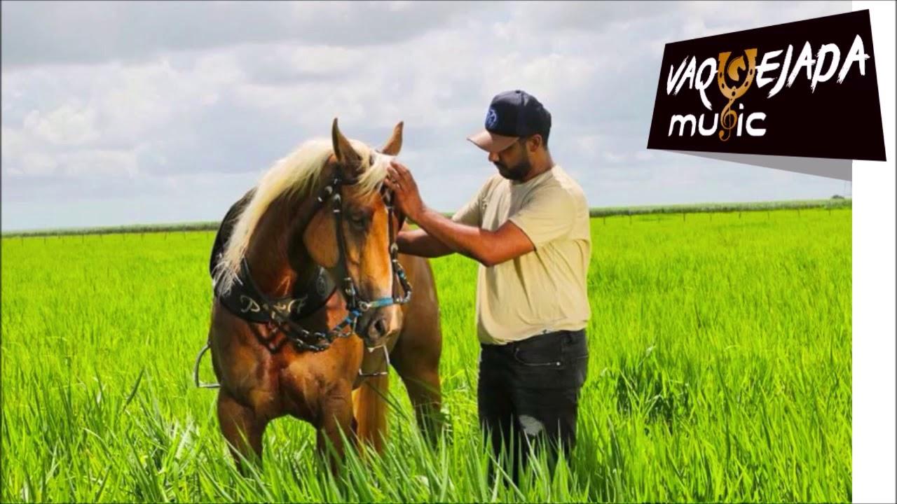 Desce Do Cavalo Pra Curtir No Paredão Raí Sr Vaquejada Music