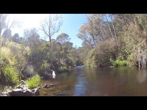 Fly Fishing, Enoch Point- Big River
