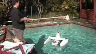De eerste Chihuahua catamaran: 'hondboot met turbo'