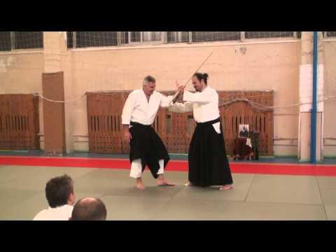 Moscow Aikido Seminar Nov 2013 Paul Muller