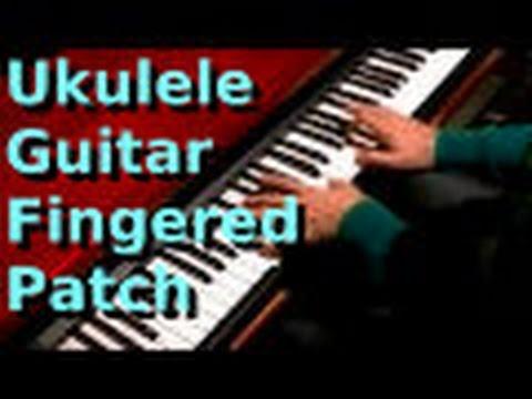 Pettinhouse ukulele guitar Fingered Patch
