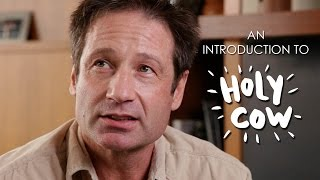 David Duchovny - HOLY COW: An introduction to the book
