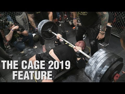 ANIMAL Presents: THE CAGE 2019
