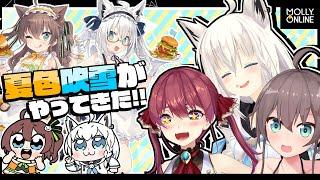 【モーリーオンライン】夏色吹雪のプライズ商品をGETせよ!!!イラスト裏話もある!?