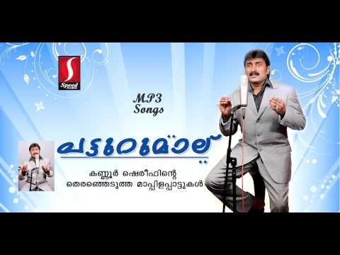 Patturumal full songs | പട്ടുറുമാൽ | Hits of Kannur shareef | Golden hit Mappila Songs | upload 2016