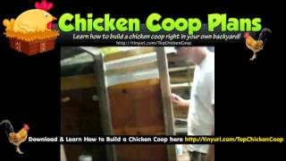 Buying A Chicken Coop (the Chicken Run)
