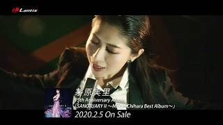 茅原実里 /  15周年記念アルバム『SANCTUARYⅡ〜Minori Chihara Best Album〜』リードトラック「We are stars!」MV Short size