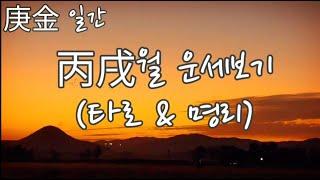 [타로와 명리] 경금일간 병술월(10월) + 타로점(일, 금전, 연애)