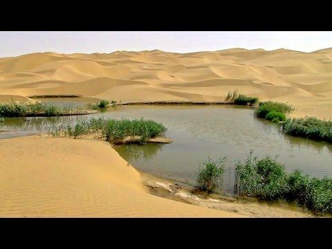 塔里木盆地沙漠塔中小綠州 Tarim Basin Desert (China)