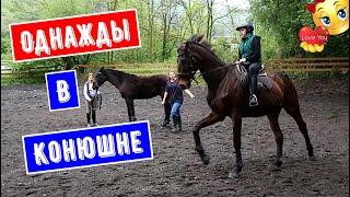 Однажды в Конюшне, Конный спорт, Верховая езда, Конный клуб в Сочи, Смайли, Smile, 717
