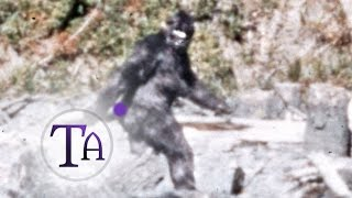 Patterson-Gimlin Bigfoot Film, 1967