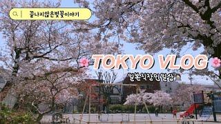 일본직장인VLOG | 끝나지않은벚꽃구경/먹기만하는직장인…