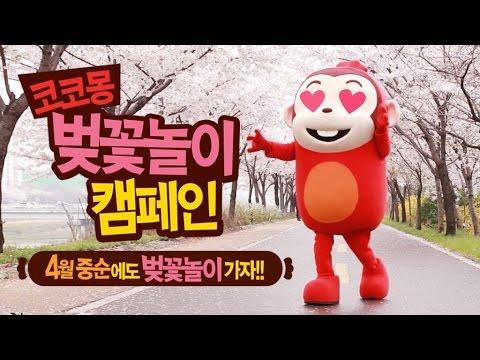 [코코몽 벚꽃 놀이 캠페인] 4월 중순에도 벚꽃놀이는 계속 된다!