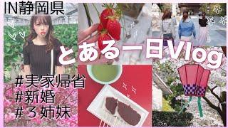 紫帆ちゃんねる 仏花