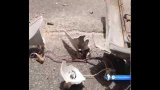 ارتفاع وتيرة حوادث السير في موريتانيا تقرير محمد حاميدو كانتي.