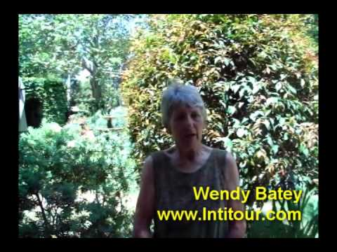 Intitour Travel - Developing Women's Businesses Pr...