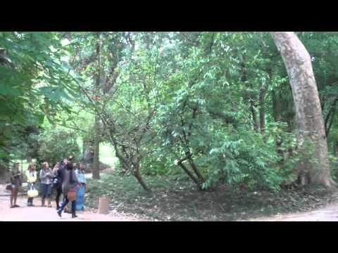 3.9.2 D.o.The Arboretum at the Lisbon Botanical Garden