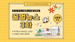 사람꽃TV 꿀벌뉴스 3화 - 복지관 좌충우돌 추석명절 …