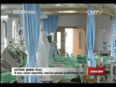Vaccine for H7N9 bird flu passes preliminary test