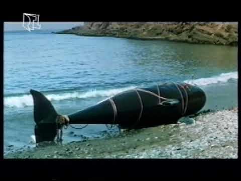 A gyilkos bálna - Orca (1977) Több narrátoros változat. letöltés
