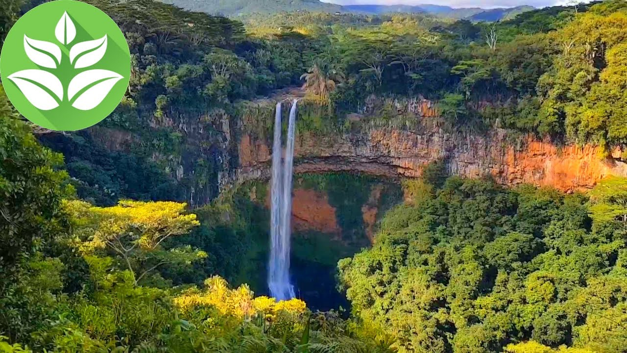 Tropic Waterfall in the Jungle. (10 hours of Relaxing Waterfall Nature Sounds for Sleep).