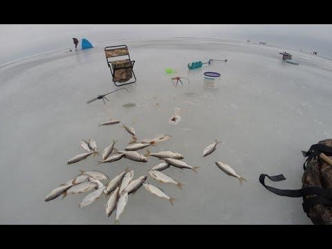 рыбалка игра рыбу