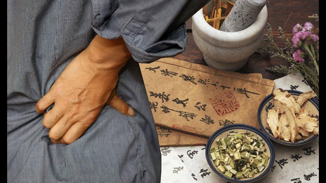 BẬT MÍ bài thuốc nam chữa ĐAU THẦN KINH TỌA từ vị thuốc quanh nhà | Bài Thuốc Nam