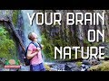 Why nature is good for your mental health