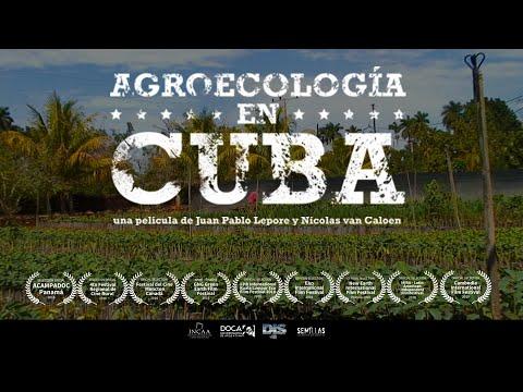 Agroecology in Cuba (Lepore y van Caloen, 2017) - English Subtitles
