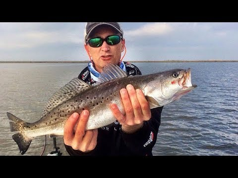 Speckled Trout 101 -- For EASY Fall And Winter Limits