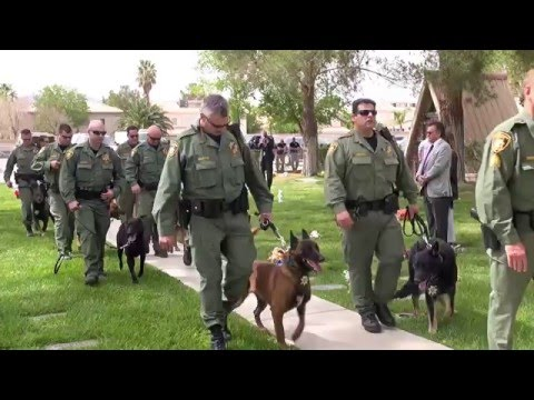 Download Youtube: LVMPD K9 Nicky Memorial Service