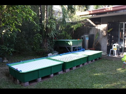 How The Indoor  Aquaponics Fish Tank System Works, MADE