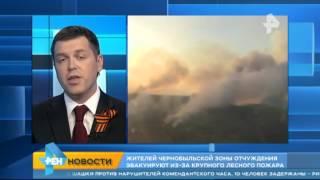 Жителей Чернобыльской зоны отчуждения эвакуируют из за крупного лесного пожара(Официальный сайт: http://ren.tv/ Сообщество в VK: https://vk.com/rentvchannel Сообщество в Одноклассниках: http://ok.ru/rentv Сообщество..., 2015-04-29T05:57:28.000Z)