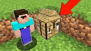 Minecraft NOOB vs PRO : ONE BLOCK HOUSE INSIDE CRAFTING TABLE! Challenge 100% trolling