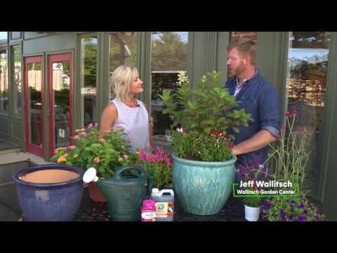 Attirant Wallitsch Garden Center | Your Garden Experts Since 1946 | Louisville, KY