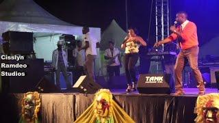 Traffik 2 Trinidad Carnival 2015