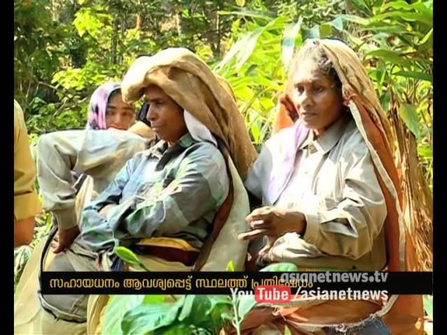 Elephant kills man in Wayanad | വയനാട്ടില് കര്ഷകനെ കാട്ടാന ആക്രമിച്ച് കൊന്നു