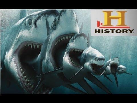 Documental Megalodon El tiburón gigante