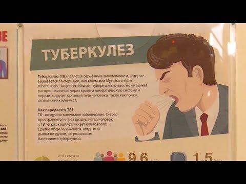 Причины, симптомы, лечение и профилактика туберкулёза