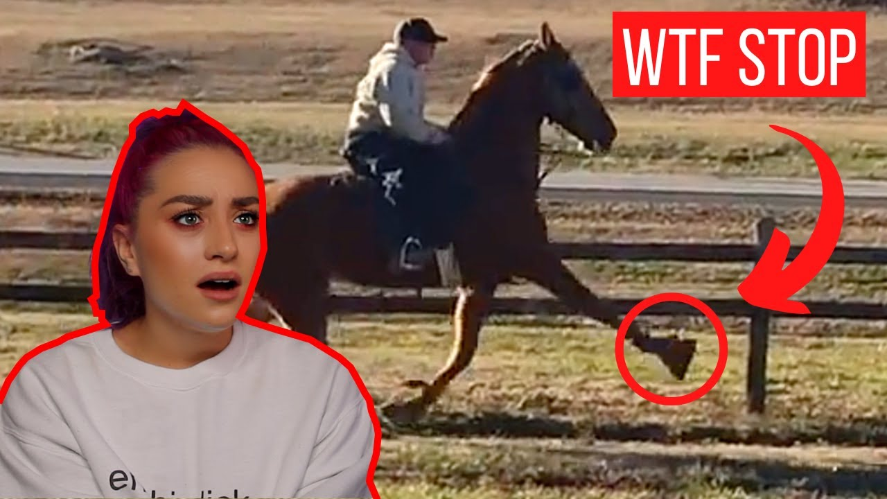 """These """"equestrians"""" on TikTok need to be STOPPED!"""