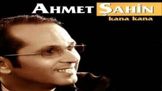 Ahmet Şahin Sallanı Sallanı © ARDA Müzik