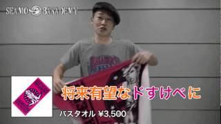 SEAMO LIVE TOUR 2011『SEAMO THE MOVIE ~目指せ!バカデミー主演男優賞...