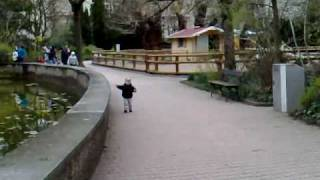 KAYRA MERT CILINGIR - Frankfurter Zoo - Ördegi kovaliyor Thumbnail