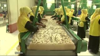 Indonesia brews higher coffee profits