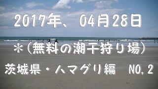 2017年04月28日に茨城県神栖市にある波崎海岸で潮干狩りの下見を致しま...