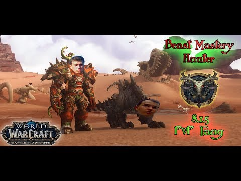 Бм хант PvP гайд 8.1.5 World of Warcraft BfA