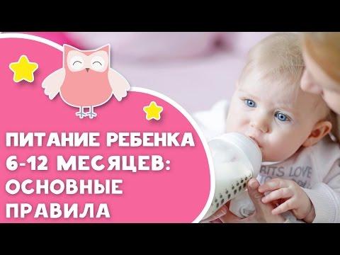 Питание ребенка 6-12 месяцев: основные правила от [Любящие мамы]