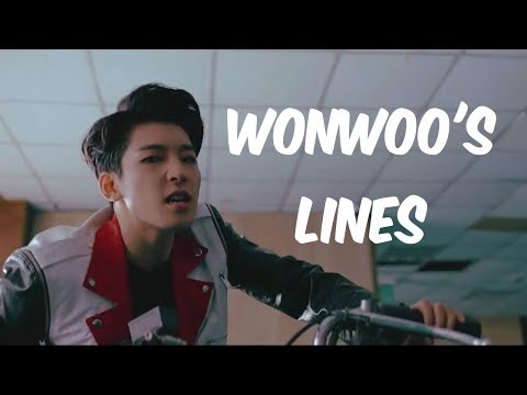 every seventeen mv but it's only wonwoo's lines